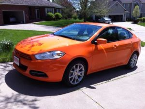 Clem, the orange Dart that stole my heart.